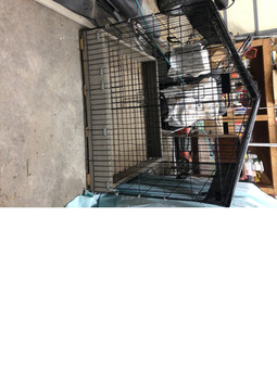 Dog Kennel and Crate